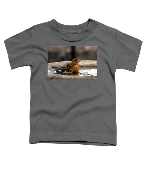 Female Summer Tanager In Bird Bath Toddler T-Shirt