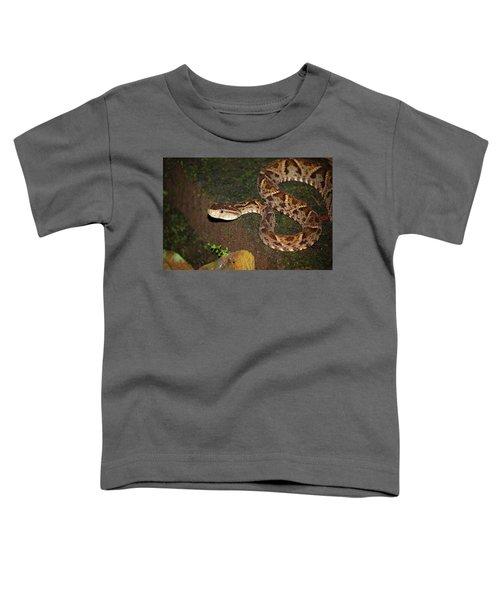 Fer-de-lance, Botherops Asper Toddler T-Shirt