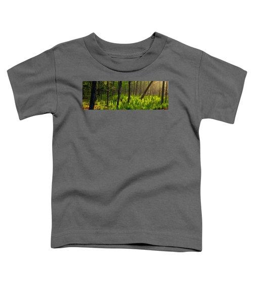 Fern Rise Toddler T-Shirt