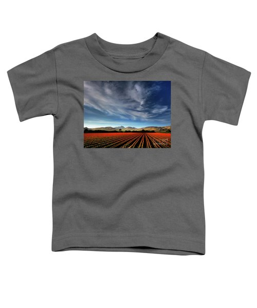 Field Of Color Toddler T-Shirt