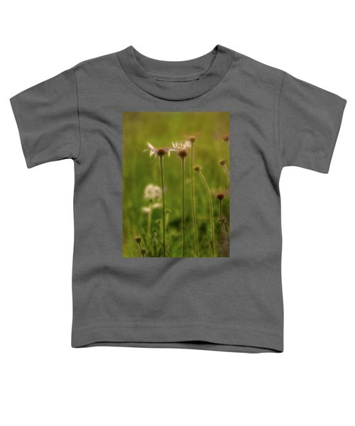 Field Of Flowers 3 Toddler T-Shirt