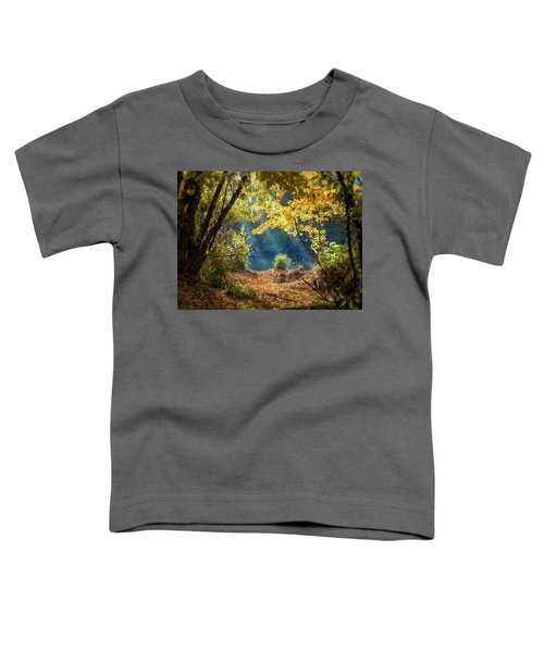 Filtered Light 3 Toddler T-Shirt