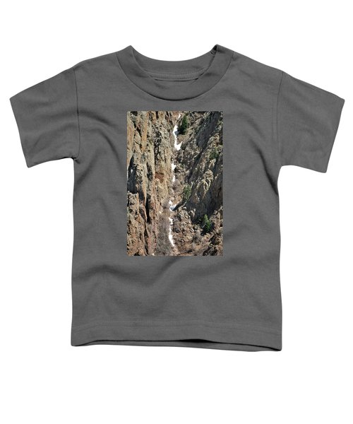 Final Traces Of Snow Toddler T-Shirt