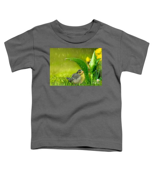 Finding Shelter Toddler T-Shirt