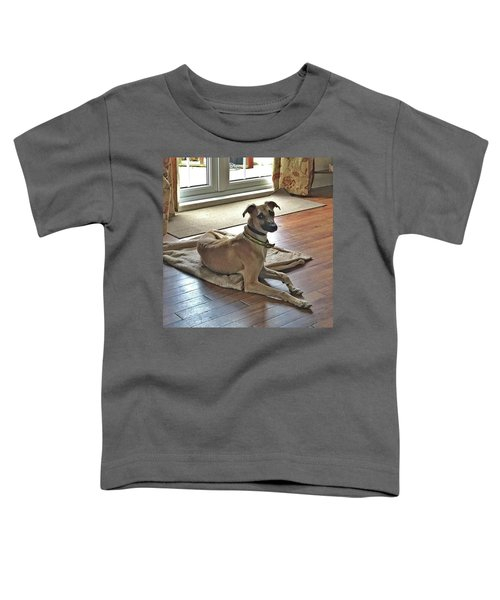Finly - Ava The Saluki's New Companion Toddler T-Shirt