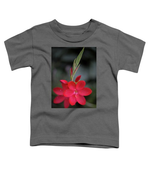 Fire Lily 2 Toddler T-Shirt