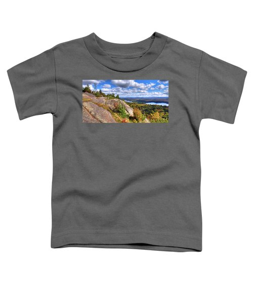 Fire Tower On Bald Mountain Toddler T-Shirt