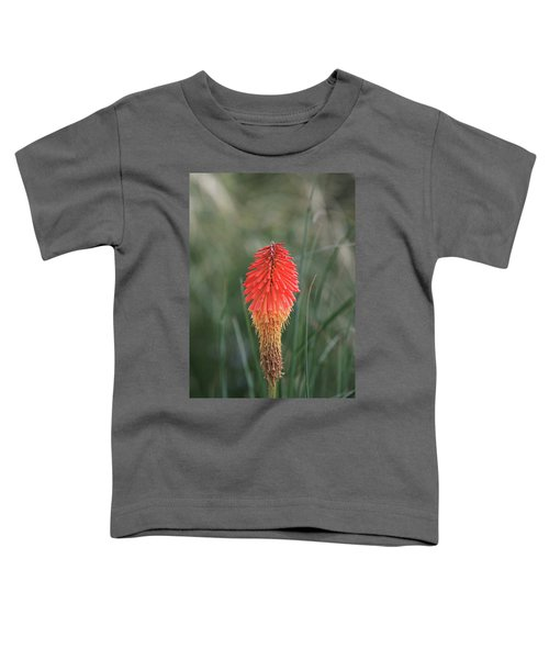 Firecracker Toddler T-Shirt by David Chandler