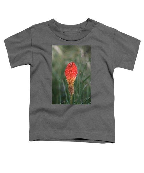 Firecracker Toddler T-Shirt