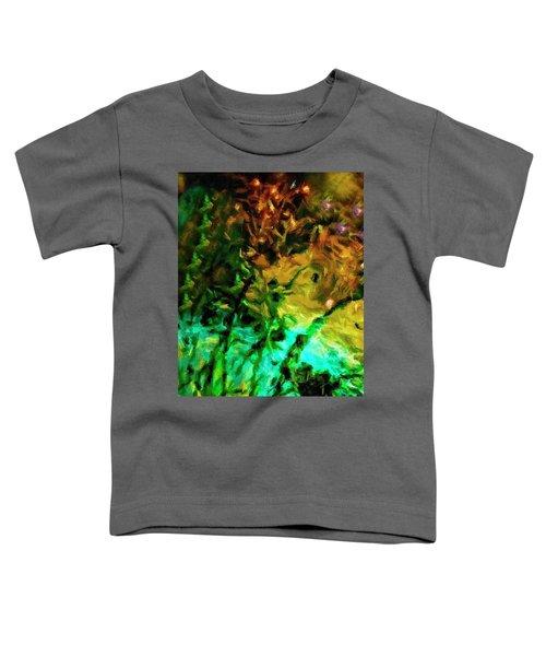 Fireworks 14 Toddler T-Shirt