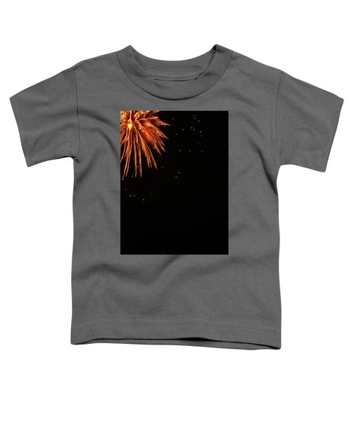 Fireworks Toddler T-Shirt