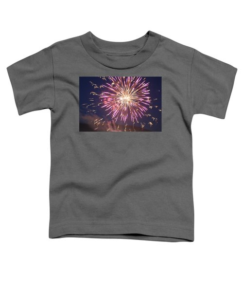 Fireworks In The Park 2 Toddler T-Shirt