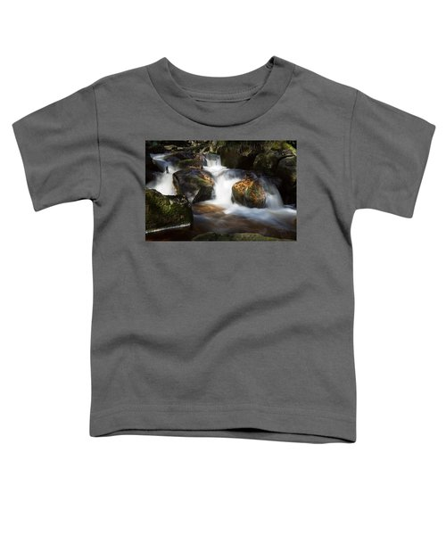 first spring sunlight on the Warme Bode, Harz Toddler T-Shirt