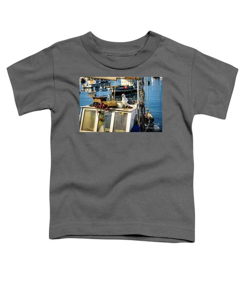 Fishing Boat Captain Seagull - Rovinj, Croatia Toddler T-Shirt
