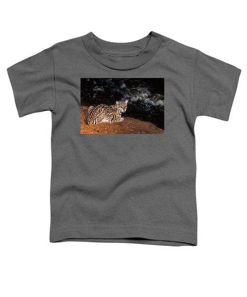 Fishing In The Stream Toddler T-Shirt by Alex Lapidus