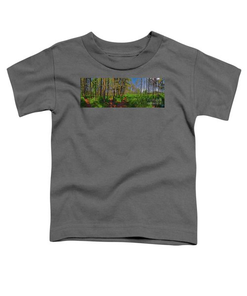 Paths, Pines 360 Toddler T-Shirt