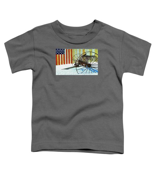 Flag And The Wheel Toddler T-Shirt
