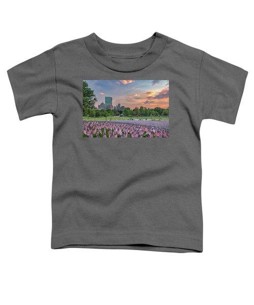 Flag Sunset On Boston Common Toddler T-Shirt