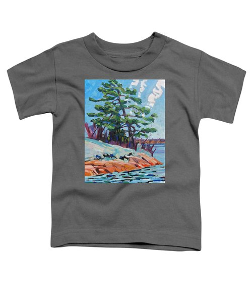 Flags And Contrails Toddler T-Shirt