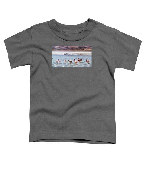 Flamingos Toddler T-Shirt by Sandy Taylor