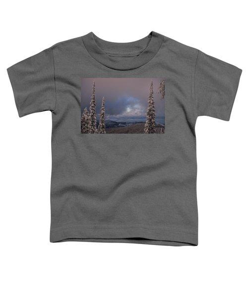 Flathead Winter 2016 Toddler T-Shirt