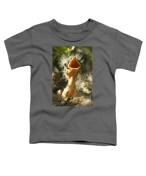 Fledgling Yellow Warbler Toddler T-Shirt