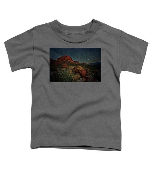 flight AM Toddler T-Shirt