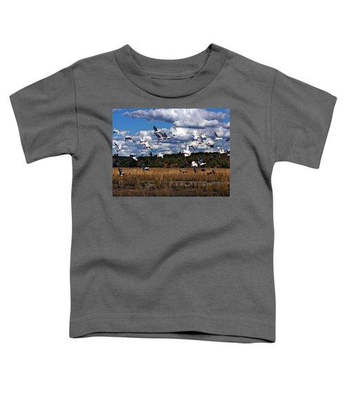 Flight Toddler T-Shirt