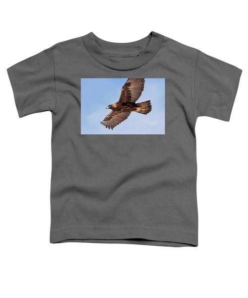 Flight Of The Golden Eagle Toddler T-Shirt