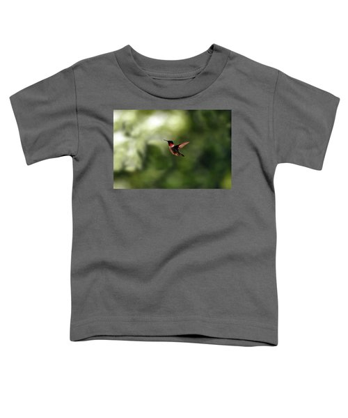 Flight Of The Hummingbird Toddler T-Shirt