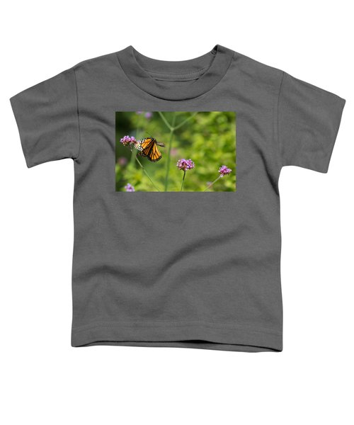 Flight Of The Monarch 2 Toddler T-Shirt
