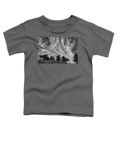 Floating Oil Spill On Water Toddler T-Shirt