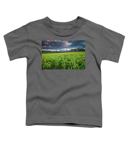 Flower Field And Sneffels Range Toddler T-Shirt