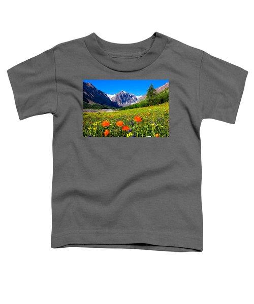 Flowering Valley. Mountain Karatash Toddler T-Shirt