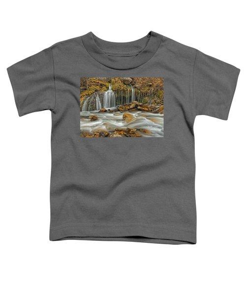 Flowing Water Toddler T-Shirt