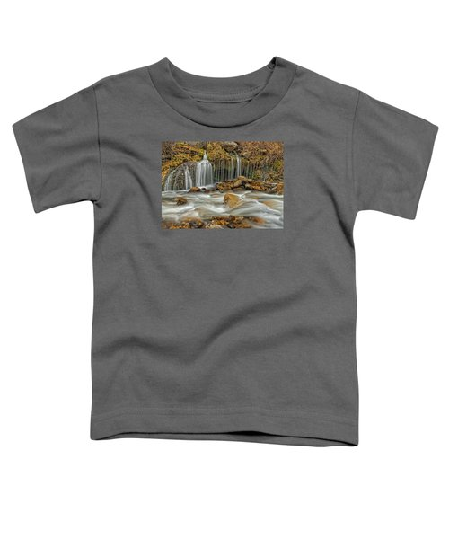 Flowing Water Toddler T-Shirt