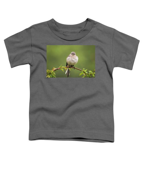 Fluffy Mockingbird Toddler T-Shirt by Terry DeLuco