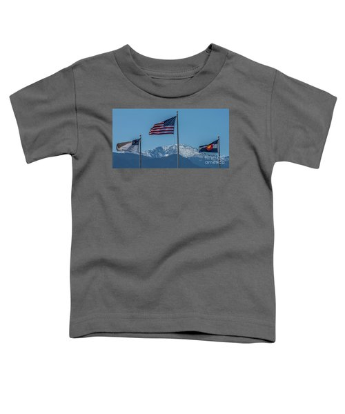 America The Beautiful Toddler T-Shirt