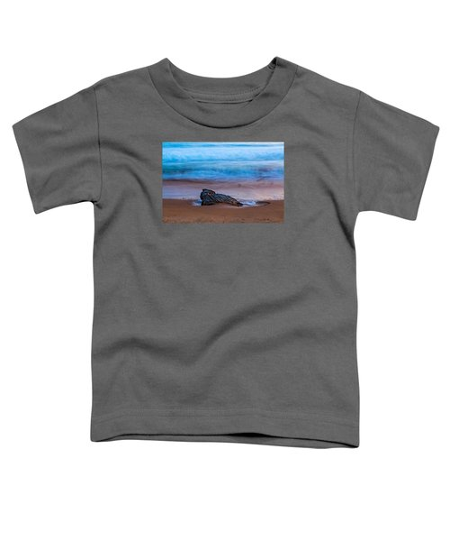 Focus Toddler T-Shirt
