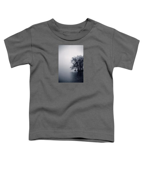 Fog Day Afternoon Toddler T-Shirt