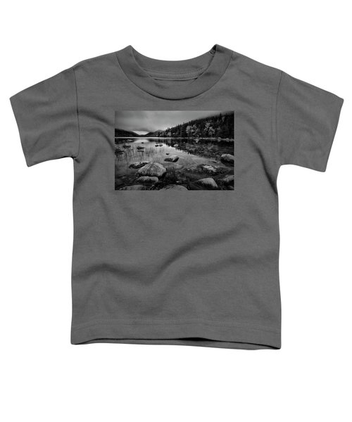 Fog On Bubble Pond Toddler T-Shirt