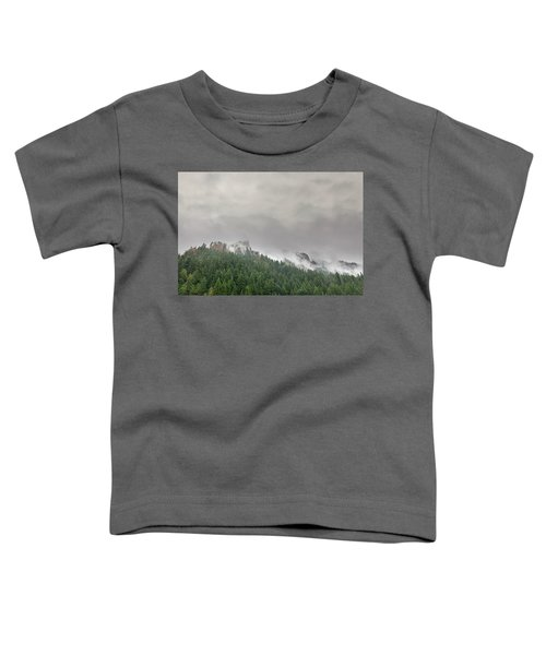 Fog Rolling Over Columbia River Gorge Toddler T-Shirt