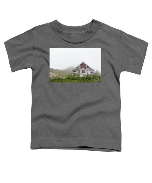 Foggy And Abandoned Toddler T-Shirt