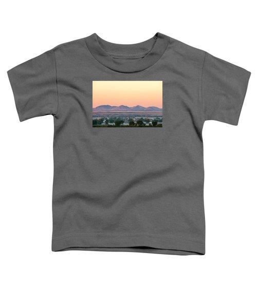 Foggy Harlem Bottom Toddler T-Shirt by Todd Klassy