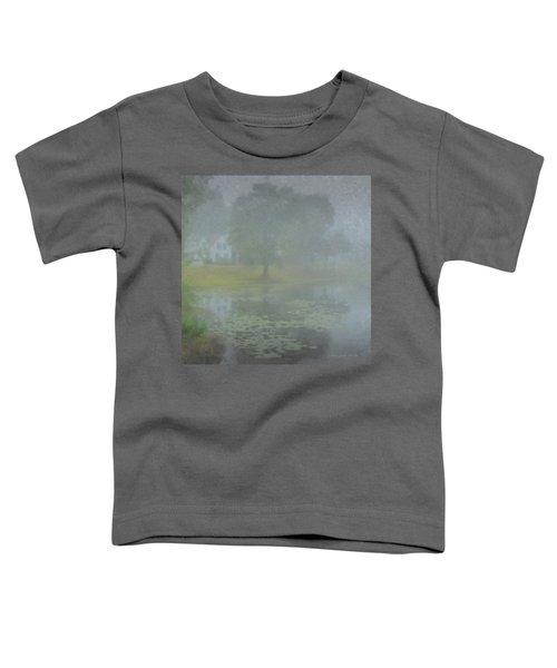 Foggy Morning On Pond Street Toddler T-Shirt
