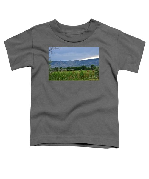 Foothills Of Fort Collins Toddler T-Shirt