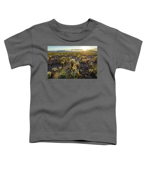 Sea Of Cholla Toddler T-Shirt