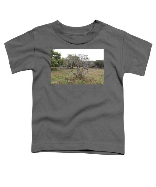 Forest Character Tree Toddler T-Shirt