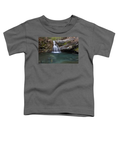Forested Creek And Tree Roots Toddler T-Shirt