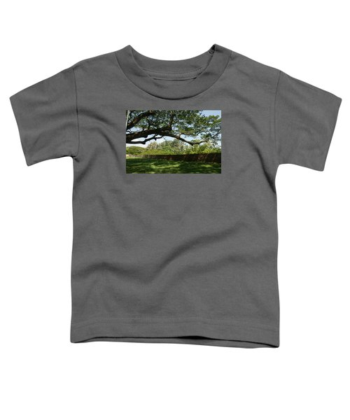 Fort Galle Toddler T-Shirt